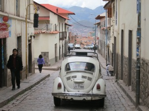 Beetles and cobblestones, a very common combination