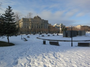 A typical park in winter